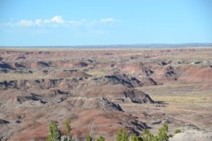 Petrified Forest NP Nord