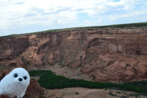 Robbi im Canyon de Chelly